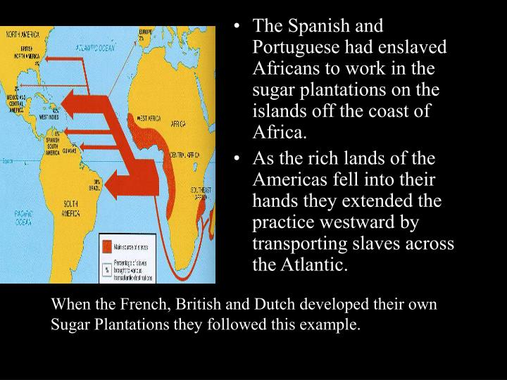 The Spanish and Portuguese had enslaved Africans to work in the sugar plantations on the islands off...