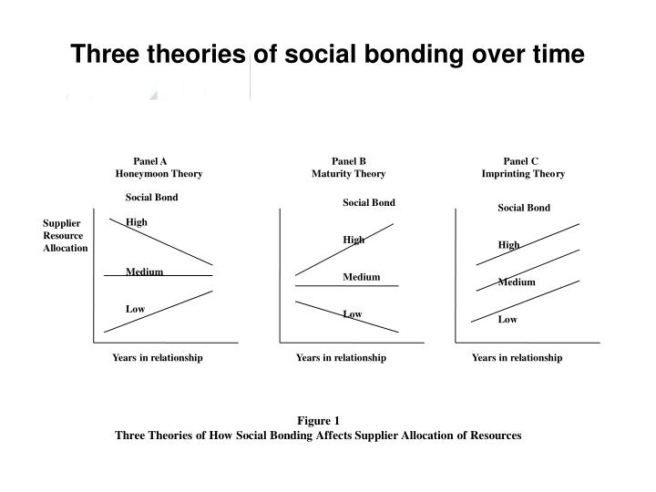 Three theories of social bonding over time