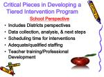 critical pieces in developing a tiered intervention program1