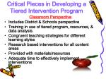 critical pieces in developing a tiered intervention program2