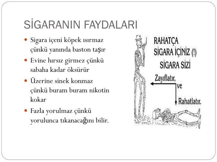 SİGARANIN FAYDALARI