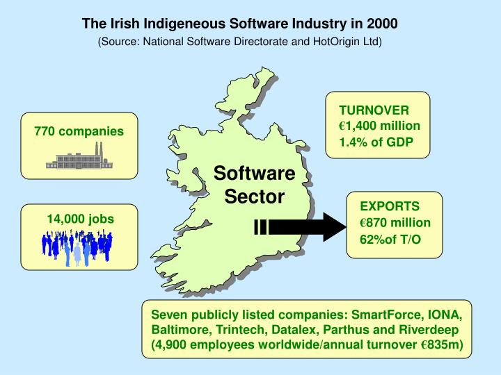 The Irish Indigeneous Software Industry in 2000