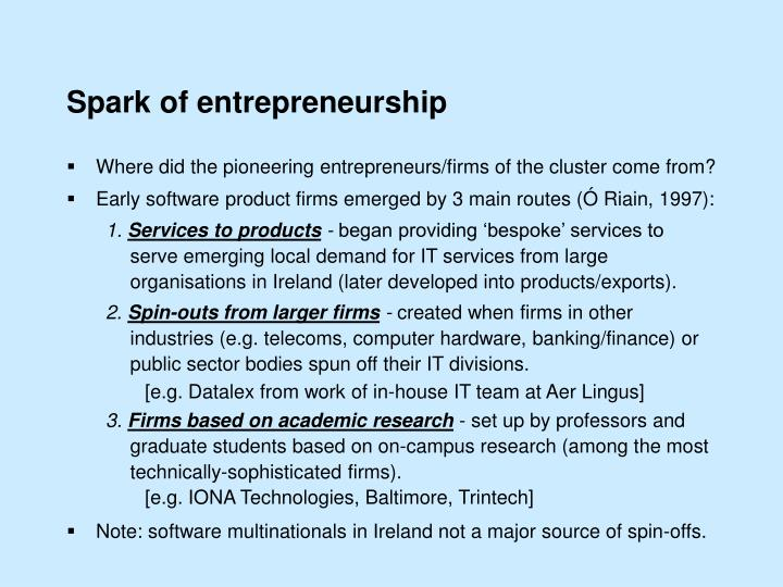 Spark of entrepreneurship