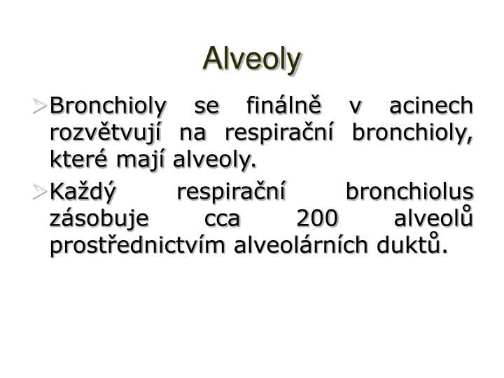 Alveoly