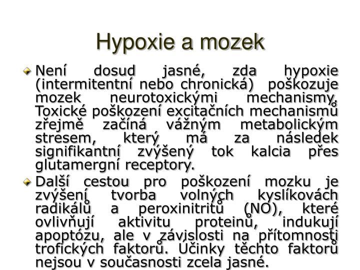 Hypoxie a mozek