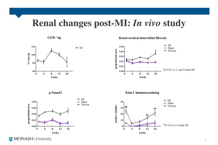 Renal changes post-MI: