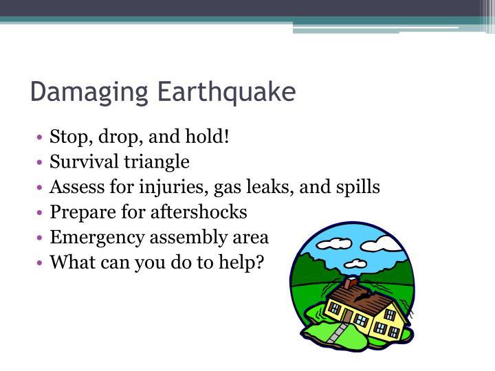 Damaging Earthquake