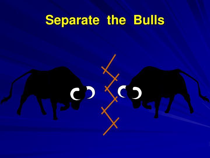 Separate  the  Bulls