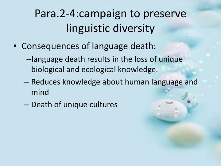 Para.2-4:campaign