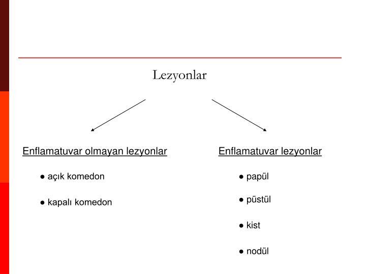 Lezyonlar