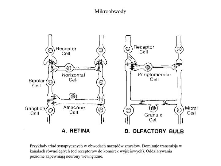 Mikroobwody