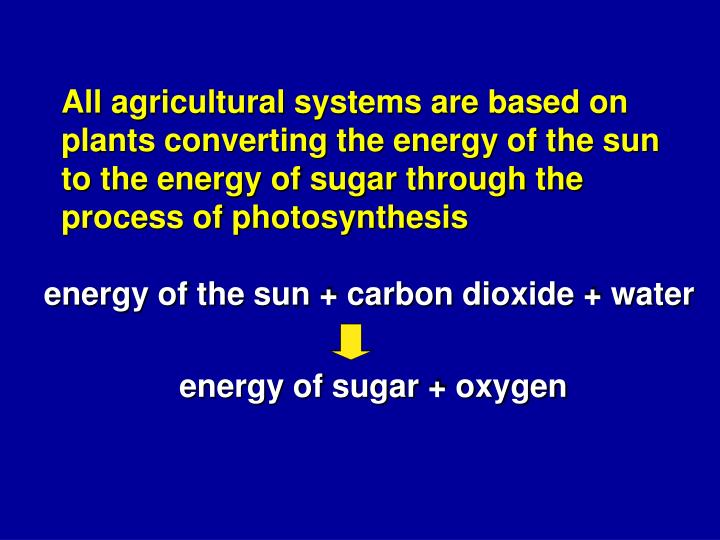 All agricultural systems are based on plants converting the energy of the sun to the energy of sugar through the process of photosynthesis