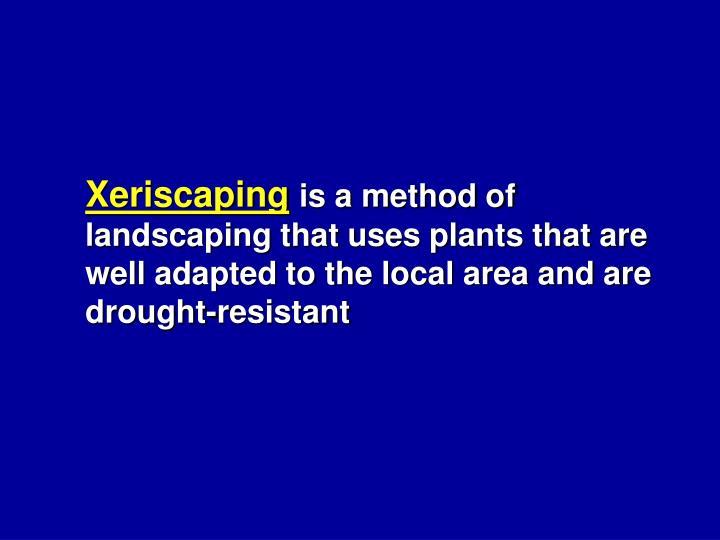 Xeriscaping