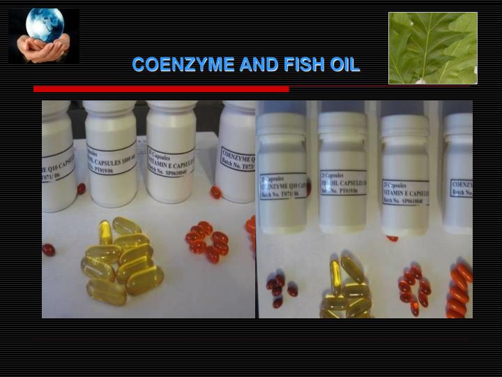 COENZYME AND FISH OIL