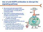 use of anti egfr antibodies to disrupt the signaling pathway