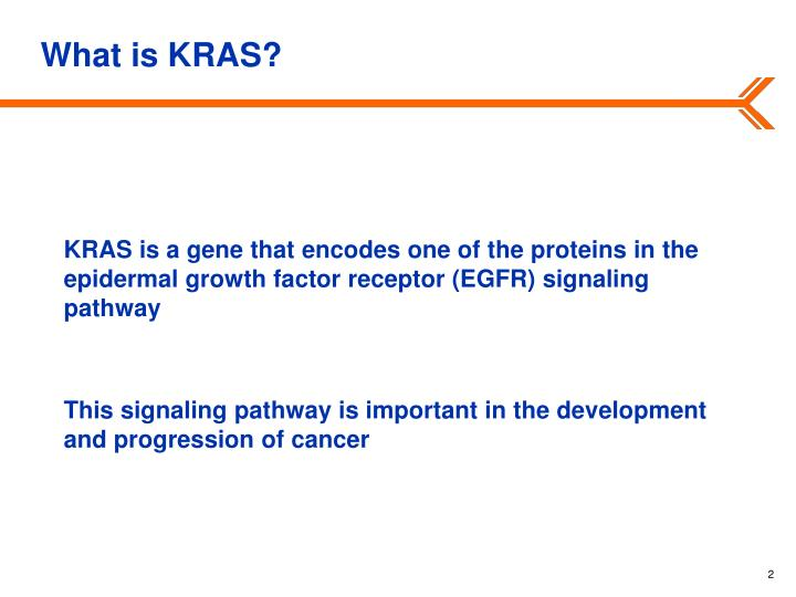 What is KRAS?