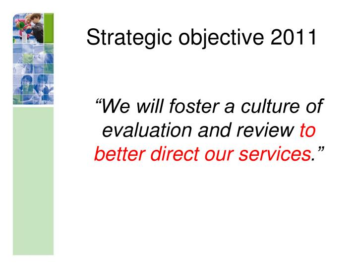 Strategic objective 2011