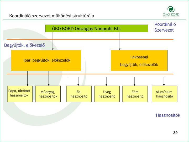 Koordináló szervezet működési struktúrája