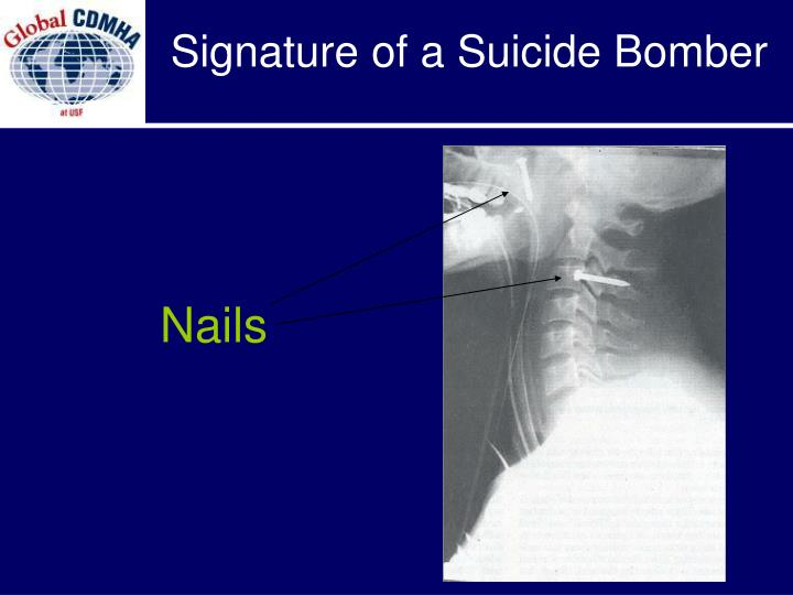 Signature of a Suicide Bomber