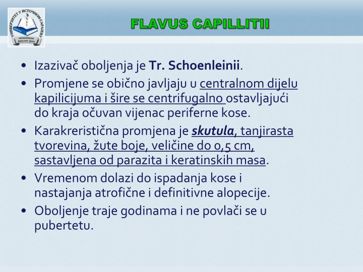 FLAVUS CAPILLITII