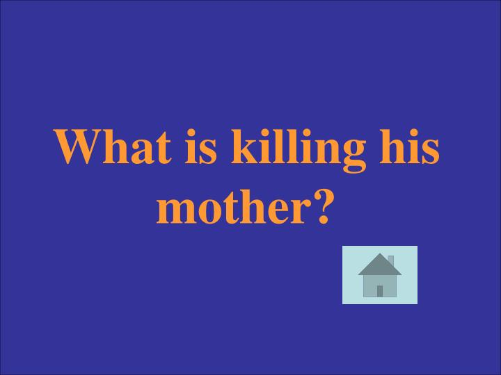 What is killing his mother?