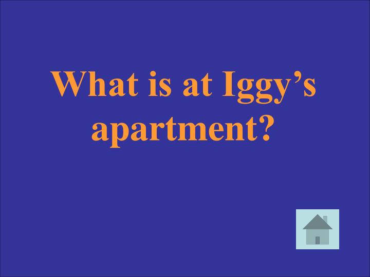 What is at Iggy's apartment?