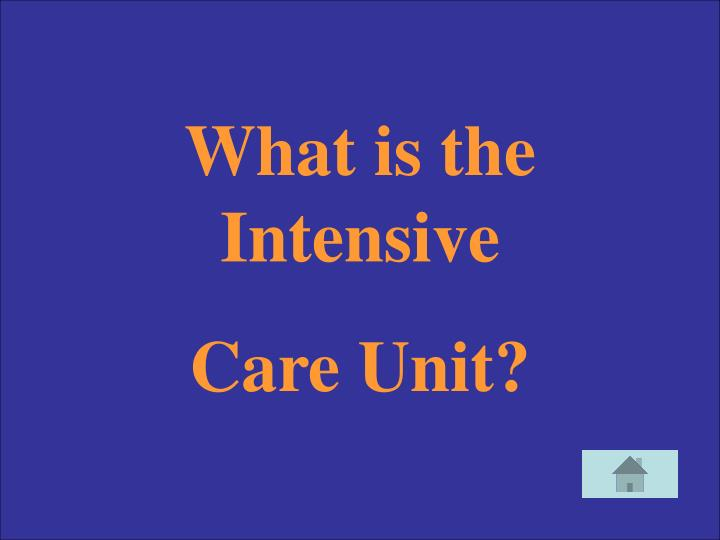 What is the Intensive