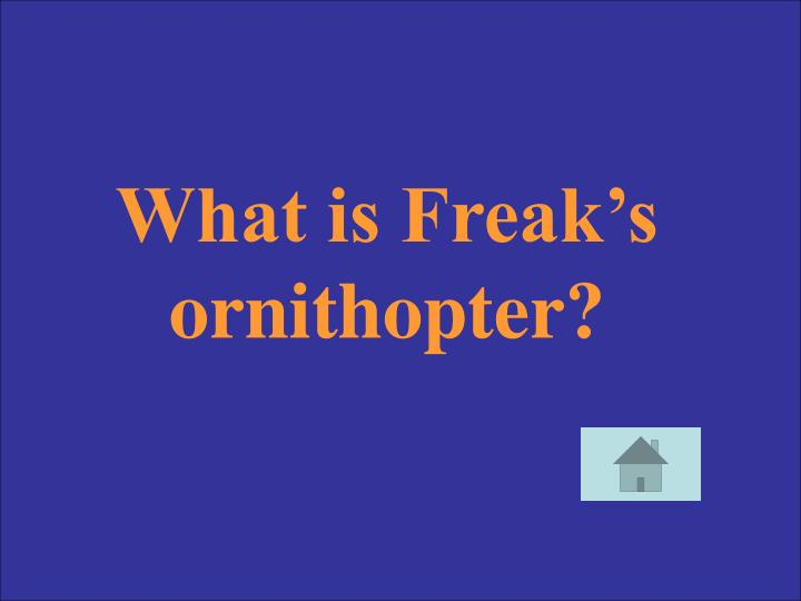 What is Freak's ornithopter?