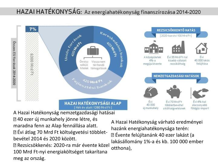 A Hazai Hatékonyság nemzetgazdasági hatásai