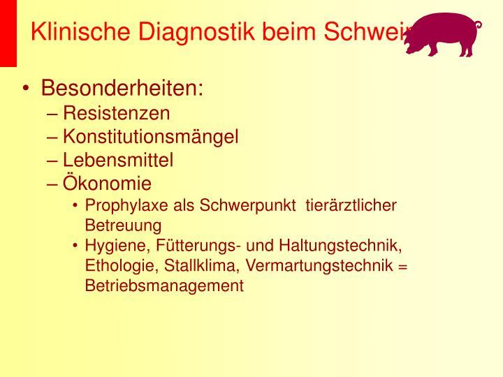 Klinische Diagnostik beim Schwein