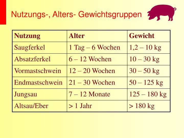 Nutzungs-, Alters- Gewichtsgruppen