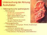 untersuchung der atmung auskultation3