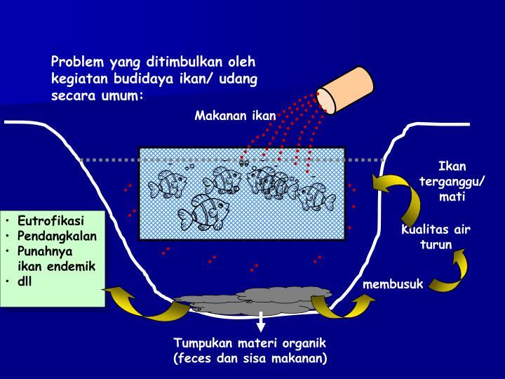 Problem yang ditimbulkan oleh kegiatan budidaya ikan/ udang secara umum: