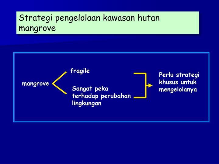 Strategi pengelolaan kawasan hutan mangrove