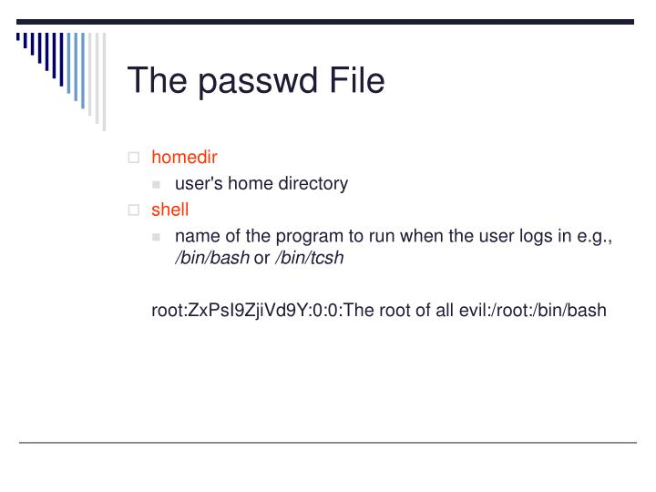 The passwd File