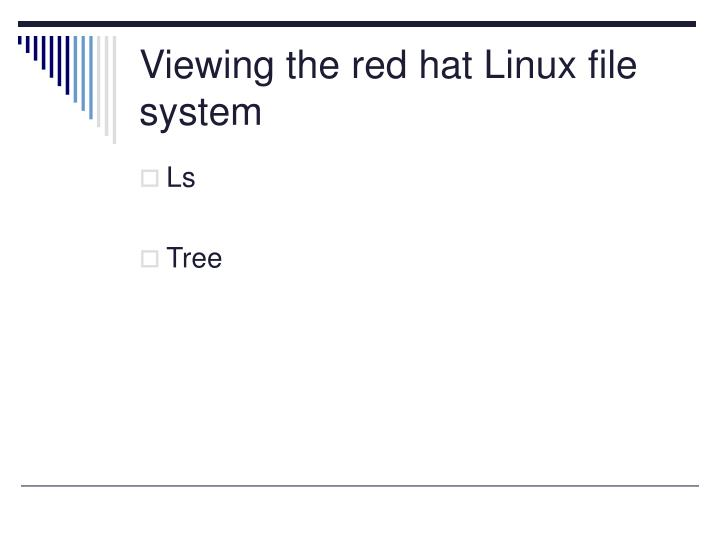 Viewing the red hat Linux file system