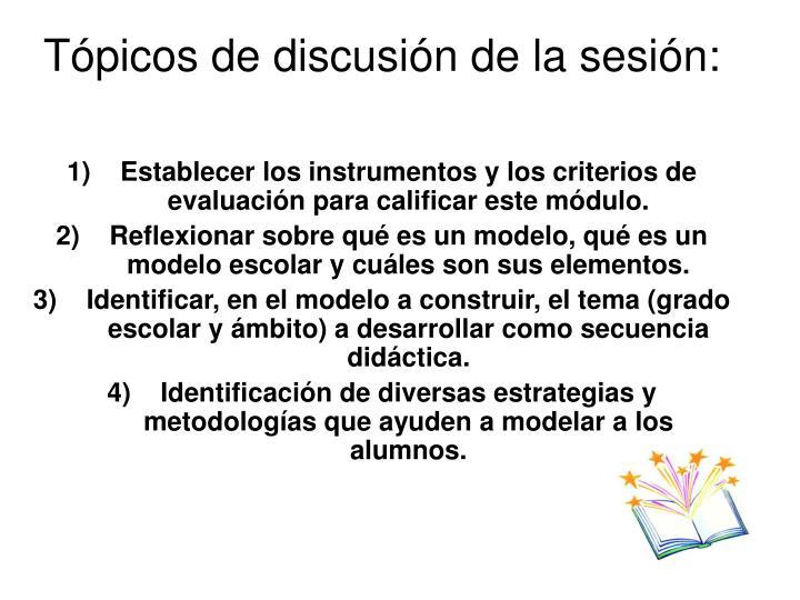 Tópicos de discusión de la sesión: