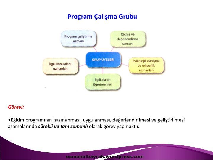 Program Çalışma Grubu