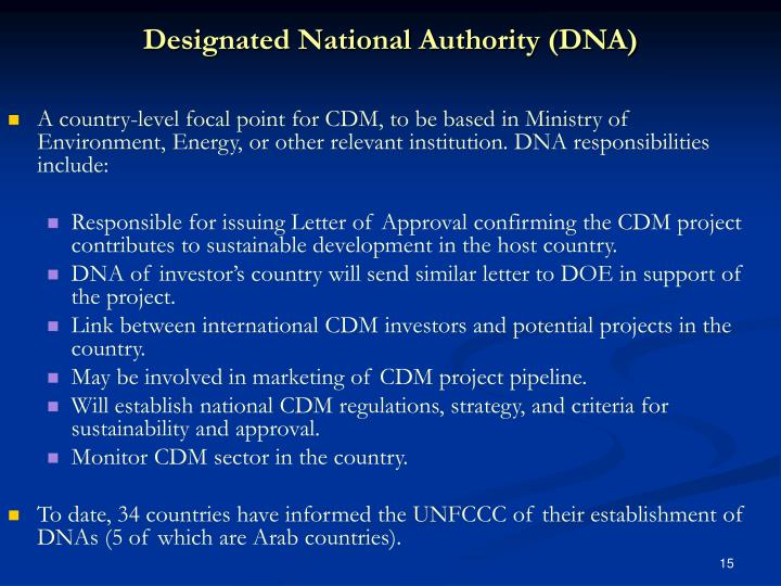 Designated National Authority (DNA)