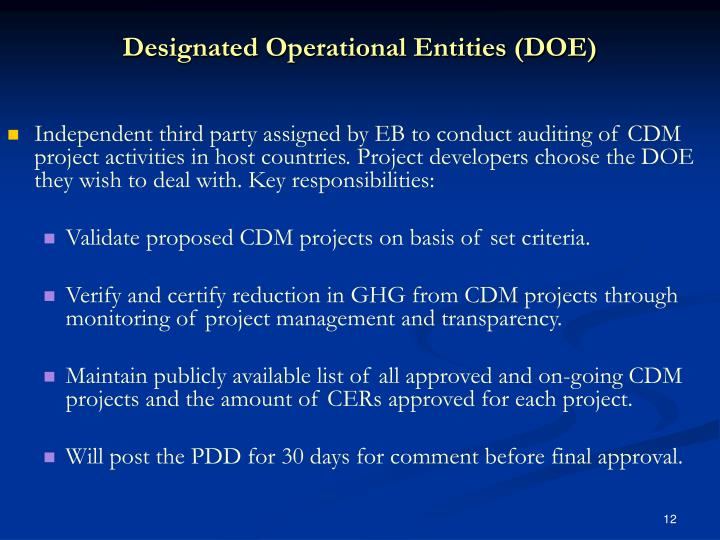 Designated Operational Entities (DOE)