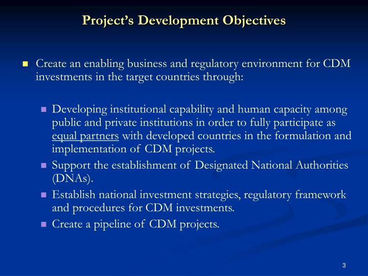 Project s development objectives