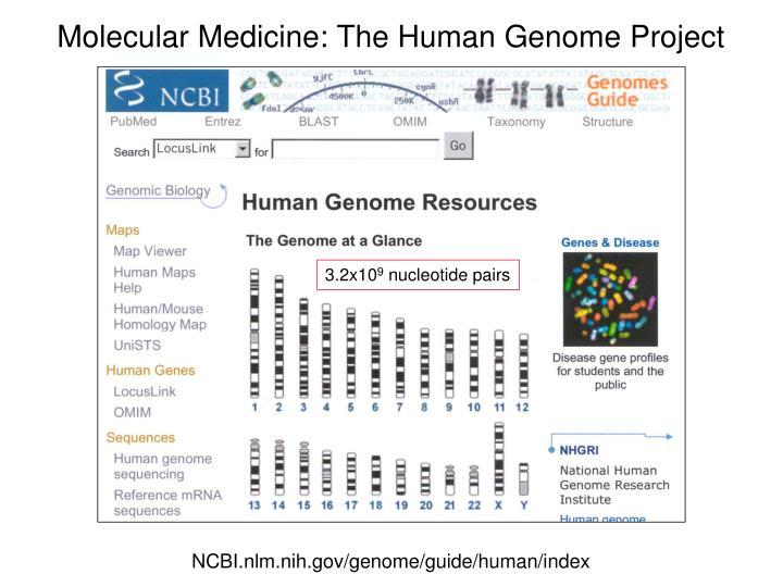 Molecular Medicine: The Human Genome Project