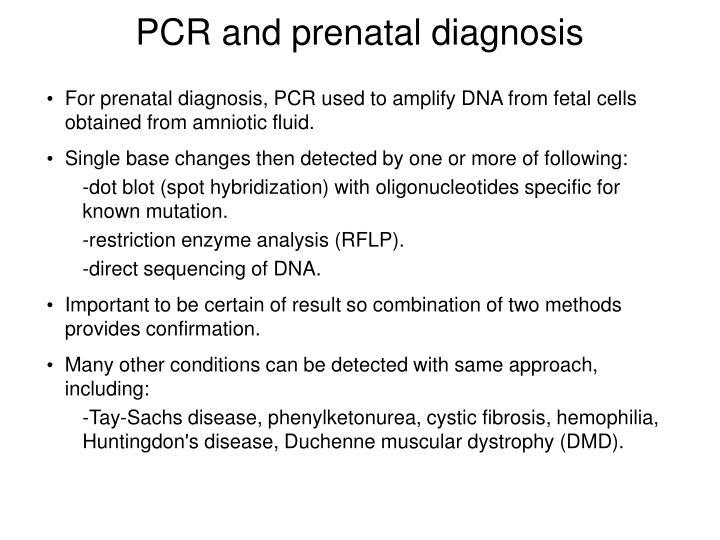 PCR and prenatal diagnosis