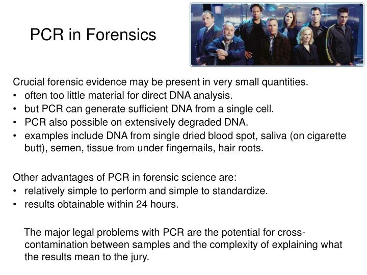PCR in Forensics