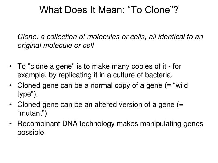 "What Does It Mean: ""To Clone""?"