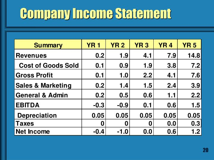 Company Income Statement