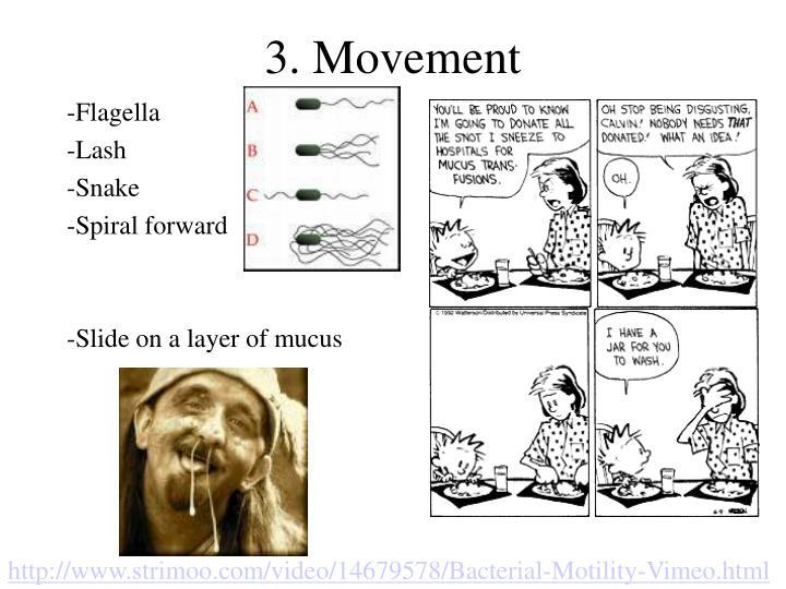 3. Movement