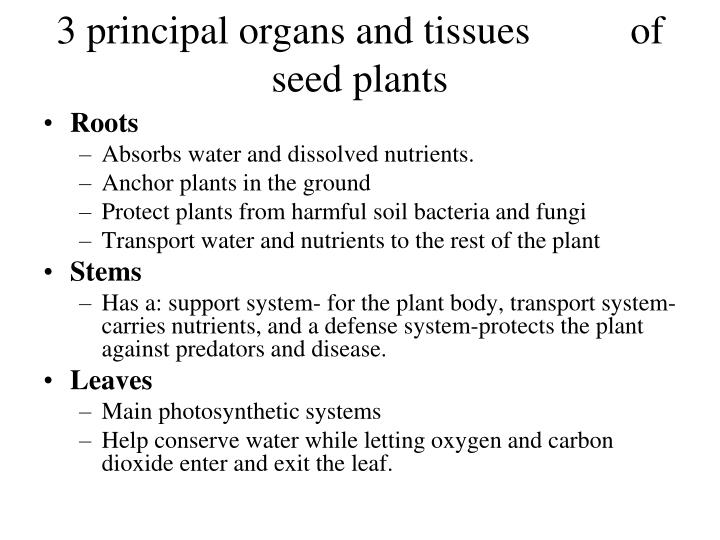 3 principal organs and tissues          of seed plants