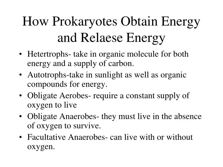 How Prokaryotes Obtain Energy and Relaese Energy
