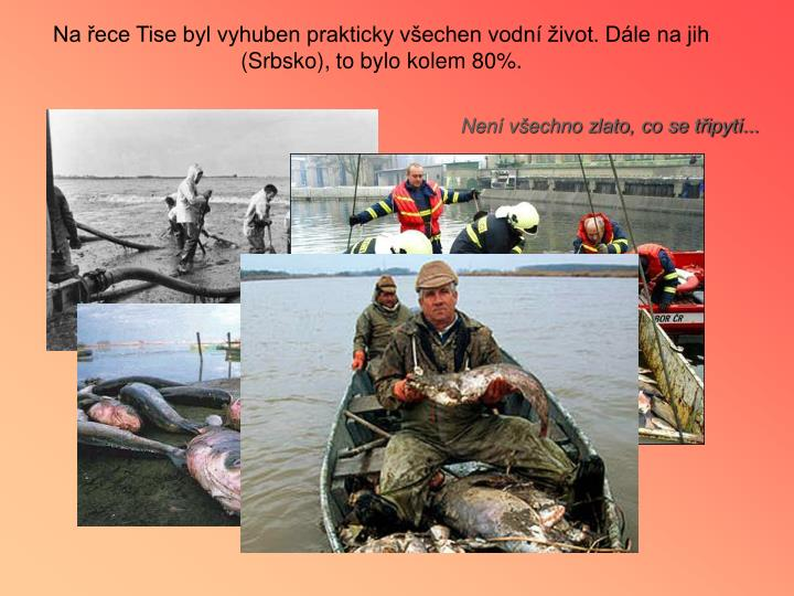 Na řece Tise byl vyhuben prakticky všechen vodní život. Dále na jih (Srbsko), to bylo kolem 80%.